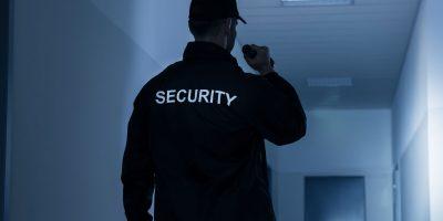 Varnostnik