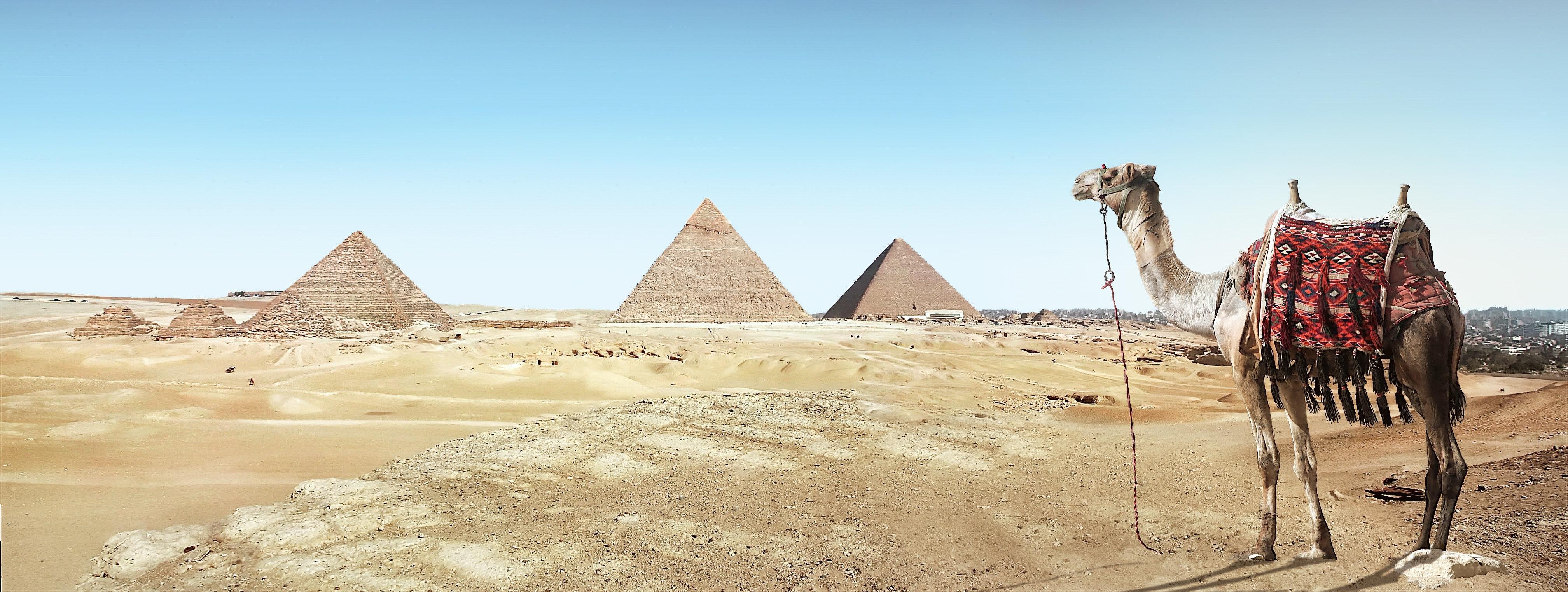 S turistično agencijo v Egipt