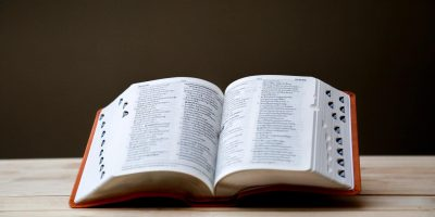 Prevajanje in lektoriranje